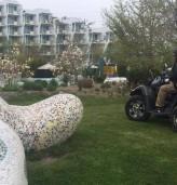 Ежегодна пролетна дезакаризация в Албена