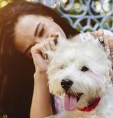 13 причини да имаш куче вместо гадже