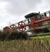 Земеделските стопани декларират доходите си до 2 май