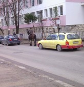 Трафик в Добрич