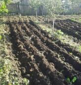Съфинансират с 1.5 млн. лева застраховането на земеделска продукция
