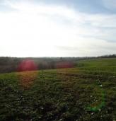 Рентата на земеделска земя с 4.8 % по-скъпа