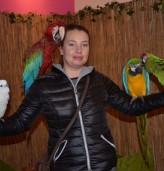 Джунглата се настани в мол - Добрич