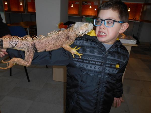 Най-смъртоносните змии гостуват на Добрич