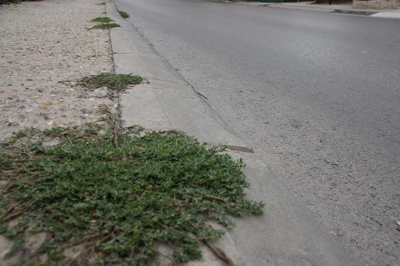 Ремонтират тротоари в Добрич с 600 000 лева