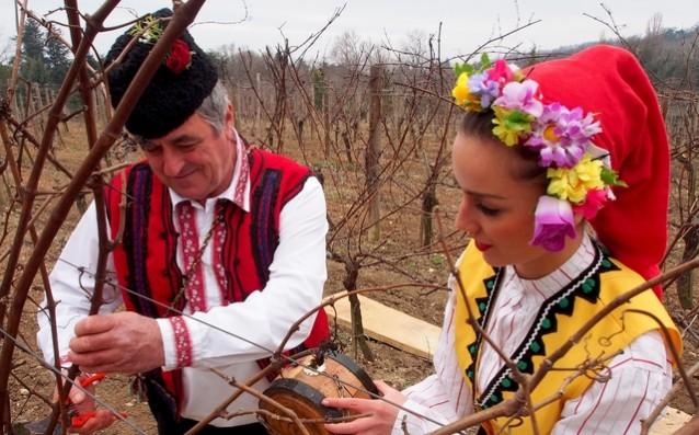 Ден на лозаря в Каварна