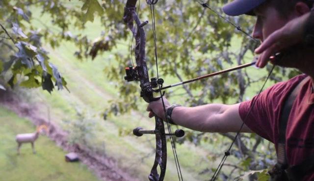 Законова промяна разрешава лова с лъкове