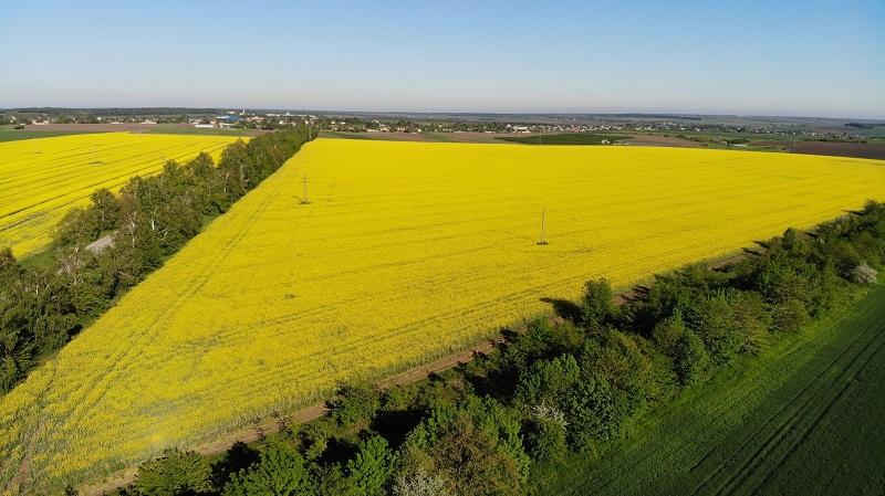 Цената за декар земеделска земя в Област Добрич продължава да бъде най-висока