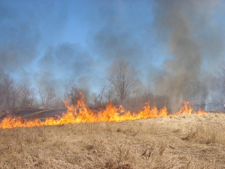 Противопожарни правила по време на прибиране на земеделските култури