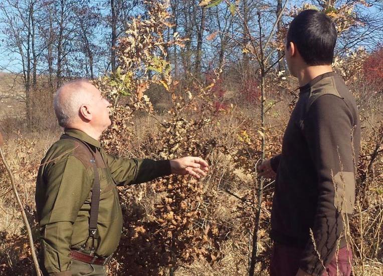 Висока оценка за състоянието на младите гори в Тервелско
