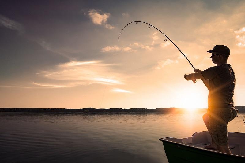 Добра година отчитат рибарите от Каварна