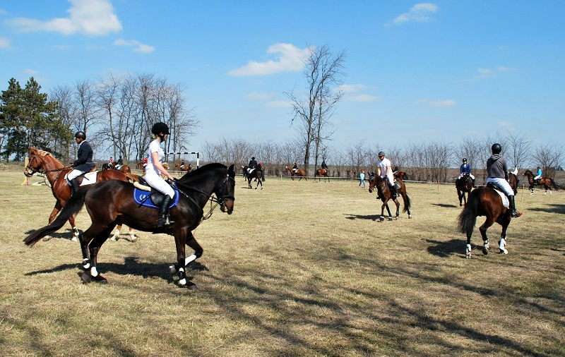 Близо 500 зрители събра турнирът по конен спорт в село Кардам