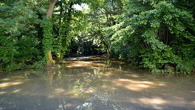 Правителството отпусна 321 885 лева за почистване на коритото на река Батова