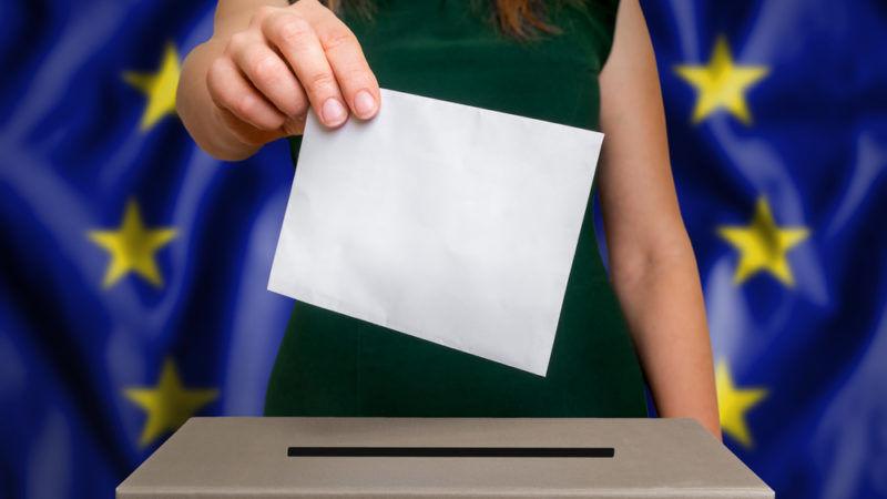 Избирателната активност в област Добрич към 17.30 часа е 25,55%