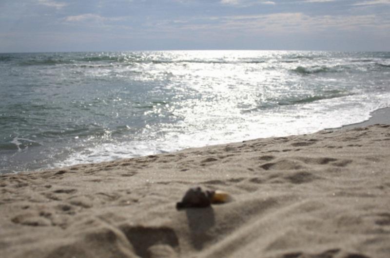 Варненско дружество ще се грижи за водно-охранителната дейност на неохраняемите плажове в област Добрич