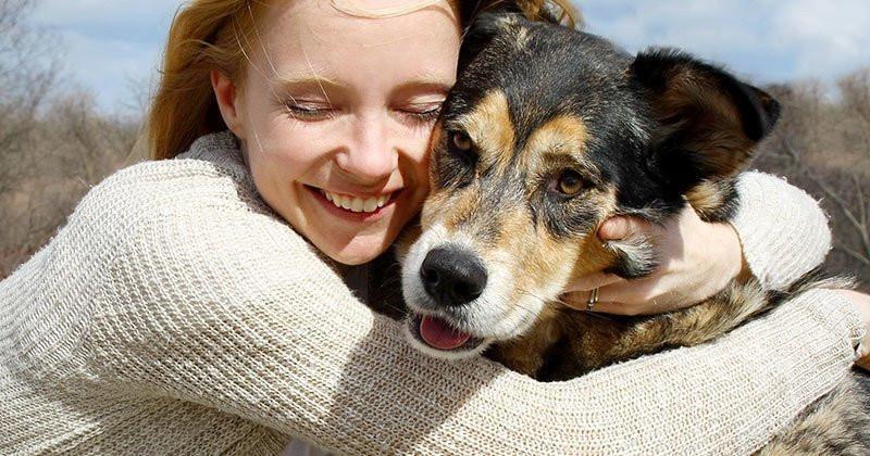 Добрич е сред областите с най-много осиновени кучета