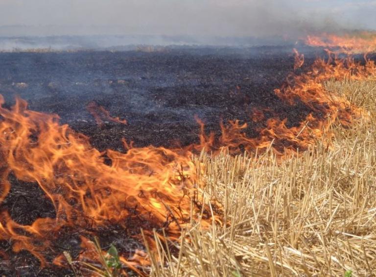 Спират субсидиите на подпалвачите на стърнища