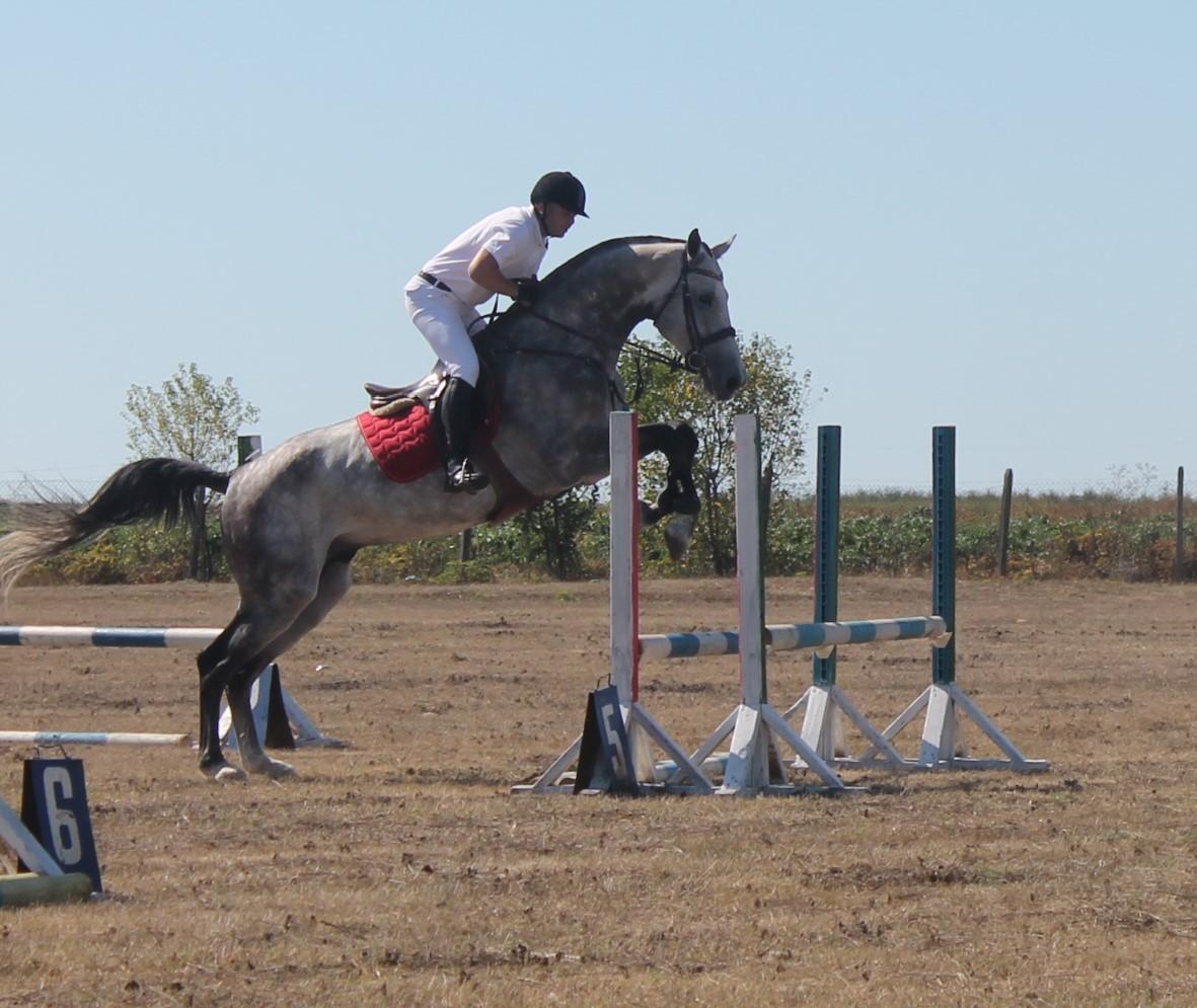 С турнир по конен спорт каварненското село Селце отбеляза своя празник