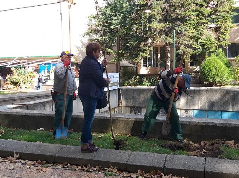 Започна инициативата за засаждане на дървета в Добрич