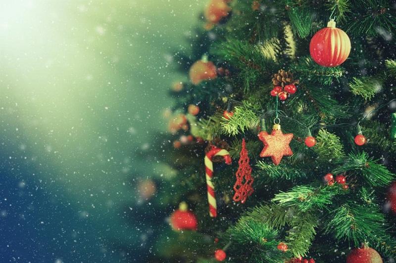 Празнична коледно-новогодишна програма на община Добрич