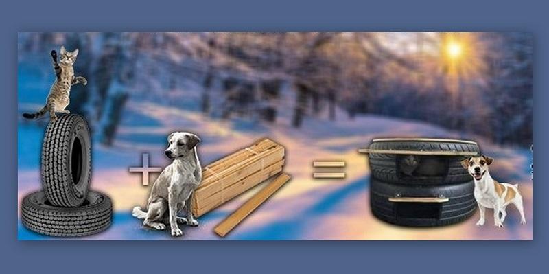 Доброволци ще изработват къщички за бездомни кучета и котки днес в Добрич