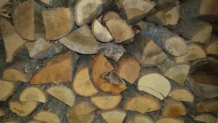 Незаконни дърва за огрев откриха в три имота в село Спасово