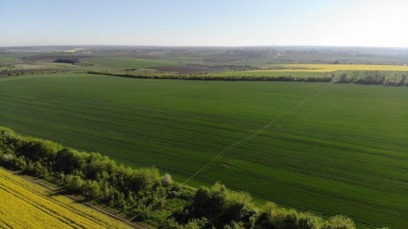 Община Добричка отдава под наем земеделска земя за период от 5 години