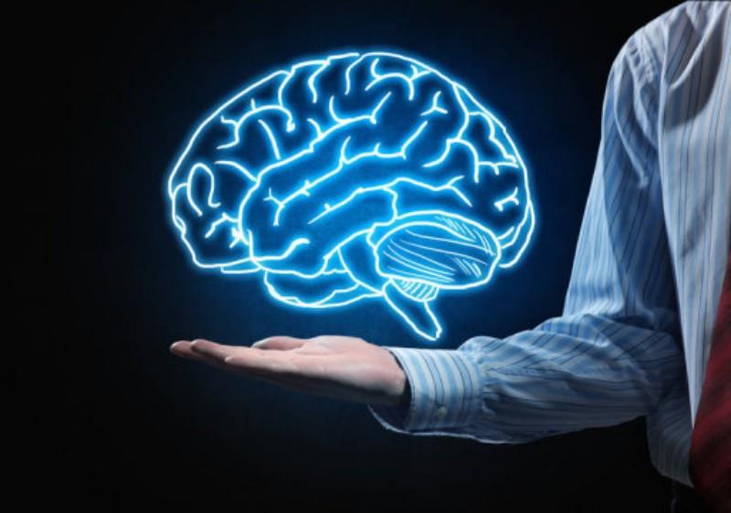 Отбелязваме Световния ден на мозъка