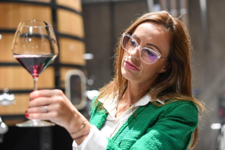 Със запазен час ще се подават документите по Лозаро-винарската програма