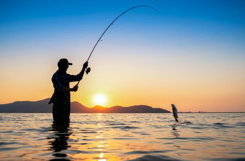 Стартира прием по две процедури от Програмата за морско дело и рибарство 2014-2020 г.