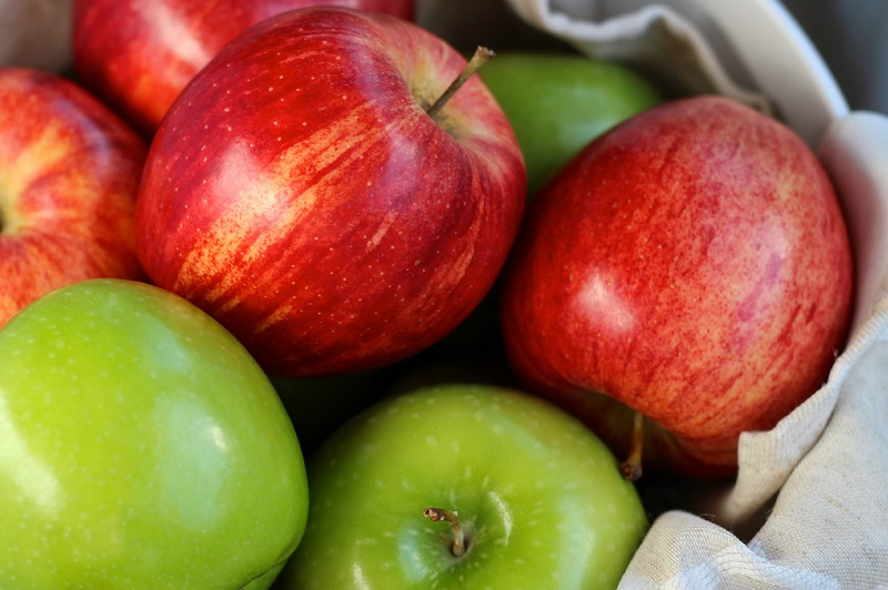 Ученици и деца от близо 100 учебни заведения в област Добрич ще получат плодове и млечни продукти по двете схеми
