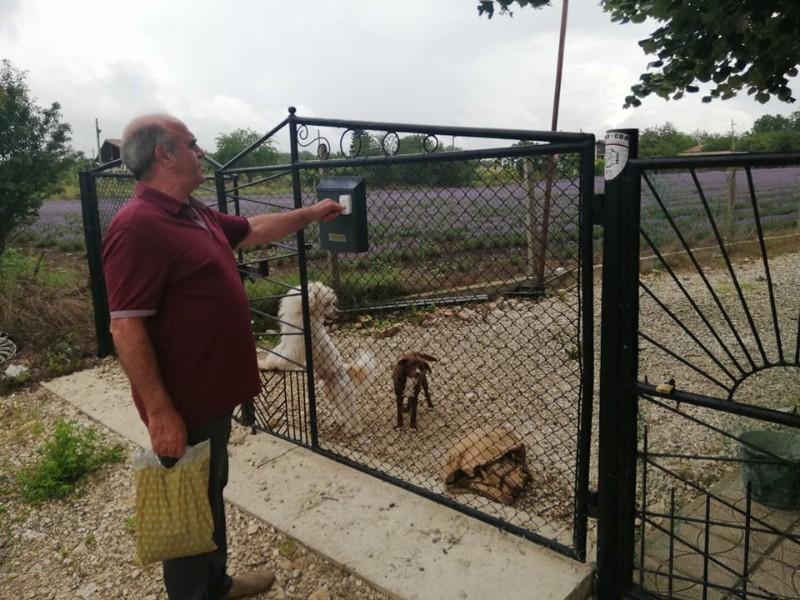 Започнаха проверки за регистрация на домашните кучета на територията на община Каварна