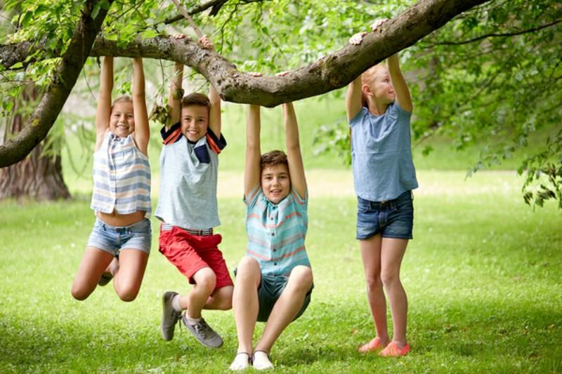 Четири летни училища очакват децата в община Добричка от 1 юли