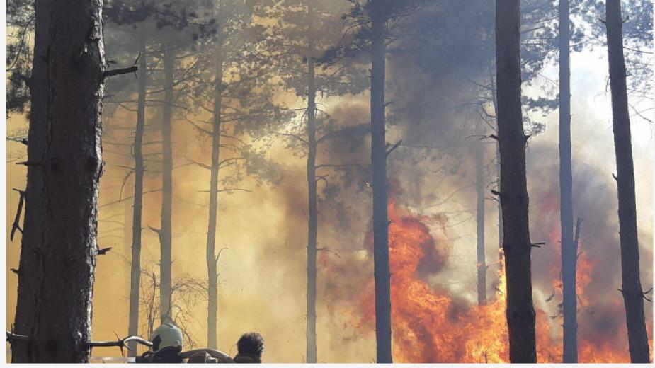 Повишен риск от пожари в 13 области, сред които и Добрич