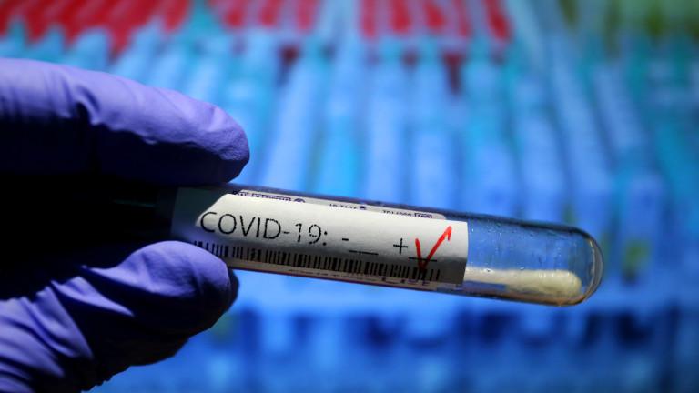 44 са новите случаи на коронавирус у нас, три са в област Добрич