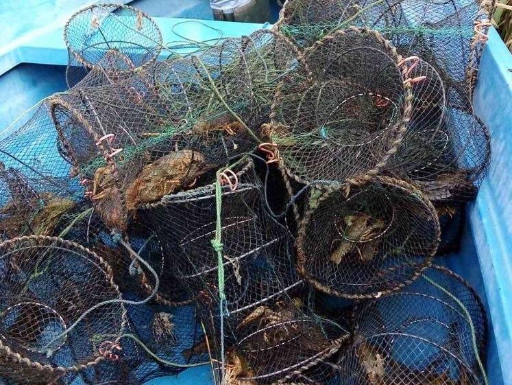 Установиха незаконен улов от риба и раци в Дуранкулашкото езеро