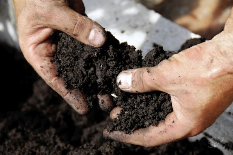 Набавете си пръст за разсадите