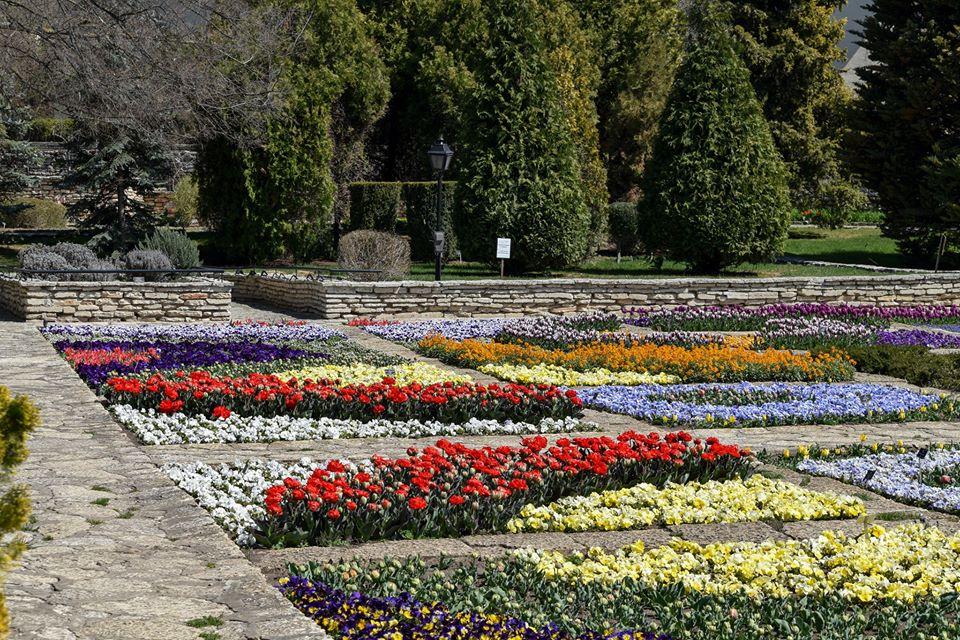 Община Добрич купува Ботаническата градина в Балчик от Софийския университет