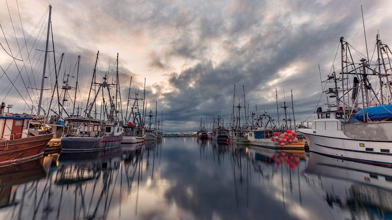 До дни влиза в сила забрана за улов на пролетно- лятно размножаващи се риби
