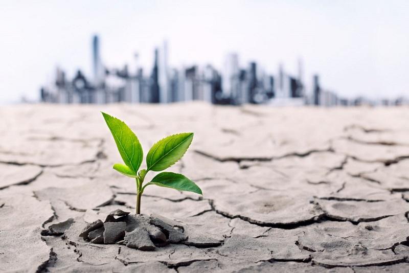 Отбелязваме Световния ден за борба със сушата и настъпването на пустините
