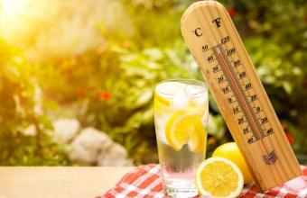 Пет храни, които не трябва да ядете в жегата