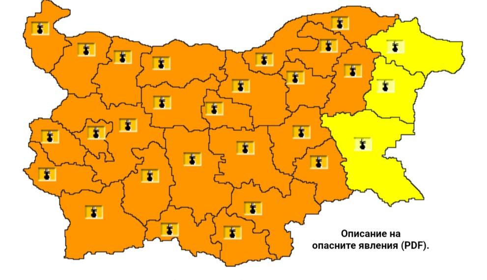 Жълт код е обявен за днес в област Добрич